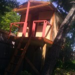 medium sized tree house
