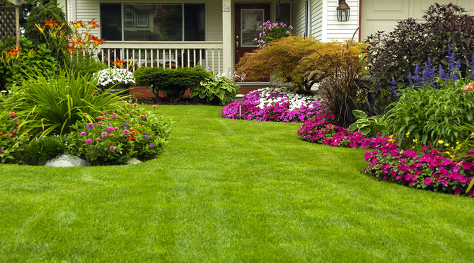 Five Ways You Can Make a Landscaping Project Affordable